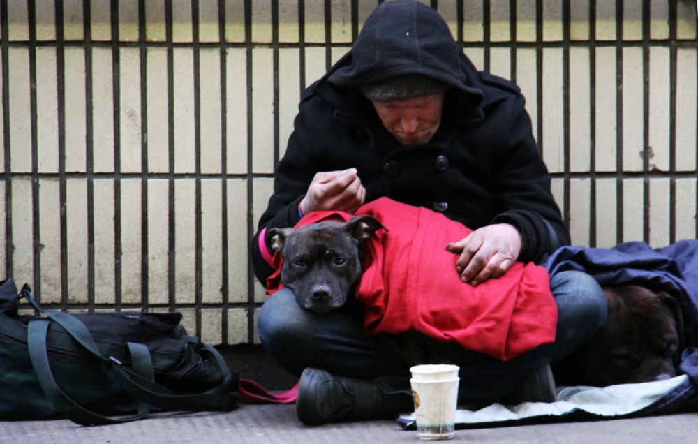 One man and his dog, homeless.